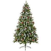 New Jersey Spruce Tree - 8ft